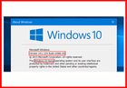 OEM Software Windows 10 Pro Retail Box For PC Or Tablet / COA License Sticker